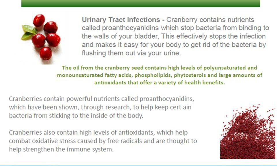 Top 10 Health Benefits Of Cranberry - Rain Soul - Rain International